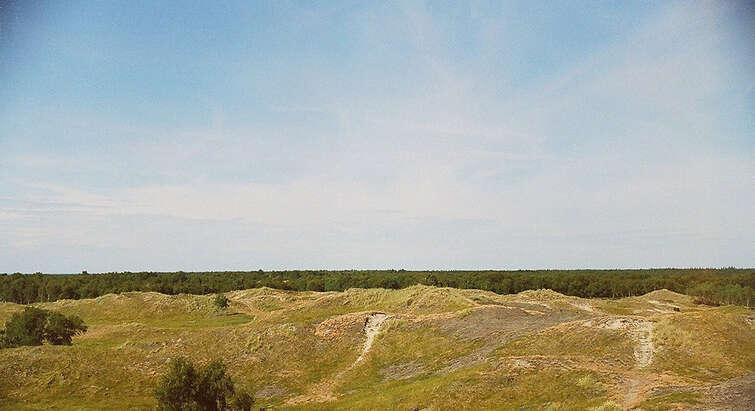 Indlandsklitter ved Højsande på Læsø